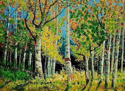 Birch Trees by Denis Grosjean