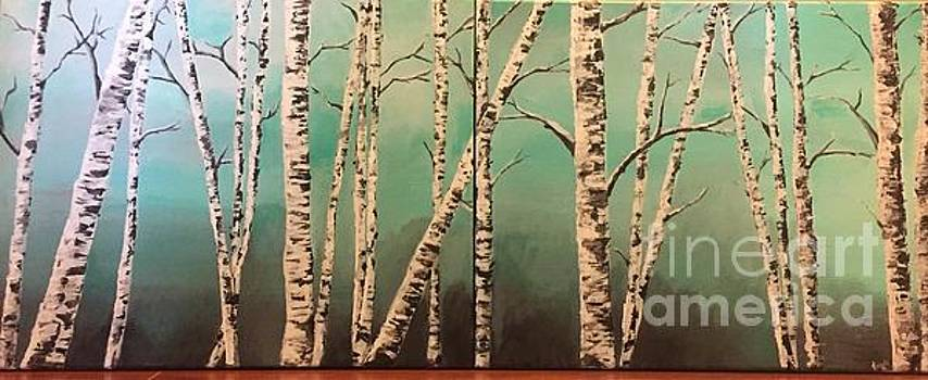 Birch Wood calm by Catherine Visconte