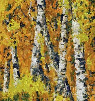 Birches And Ferns by Dragica Micki Fortuna