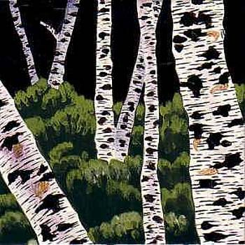 Birches by Dy Witt