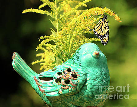Bird and Butterfly on Flowers by Luana K Perez