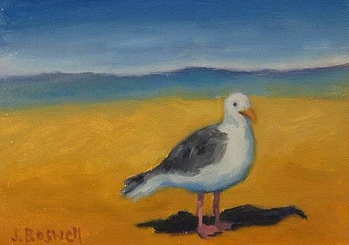 Bird at the Beach by Jennifer Boswell