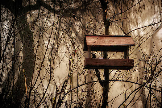 Bird feeder by Peter Fodor