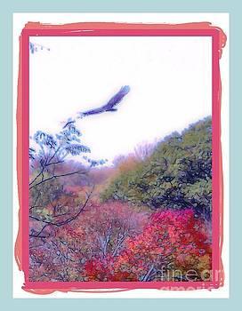 Bird in Flight by Shirley Moravec