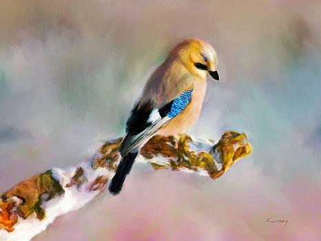 Bird by Johanne Dauphinais