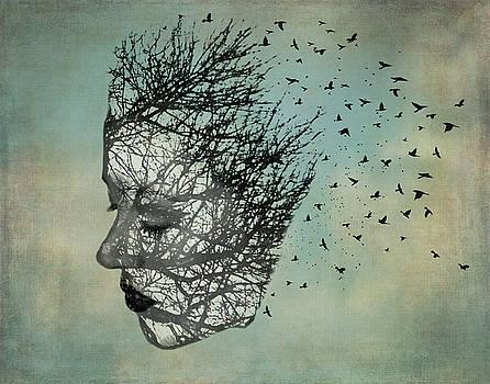 Bird Lady by Diana Boyd