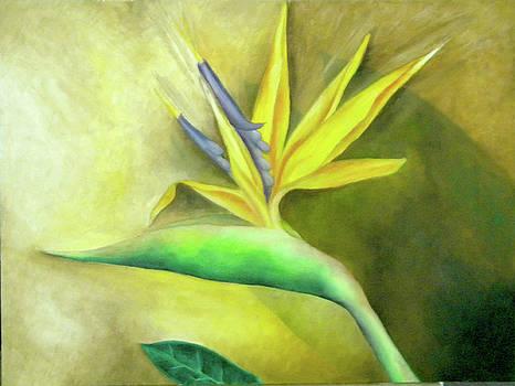 Bird of Paradise 1 by Miriam Besa