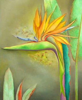Bird of Paradise 2 by Miriam Besa
