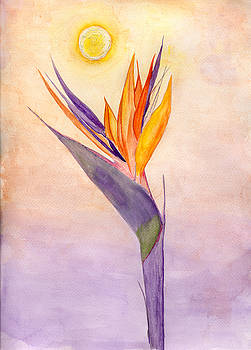 Bird of Paradise by Anne Gitto