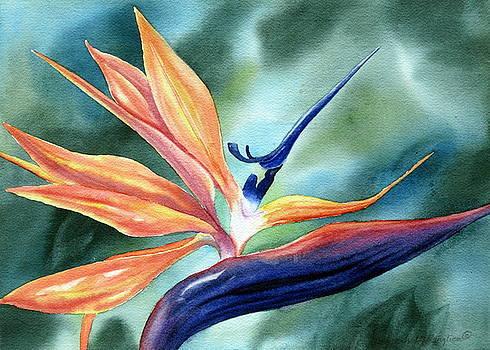 Bird of Paradise by Deborah Ronglien