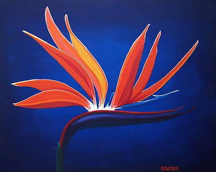 Bird of Paradise by Shiela Gosselin