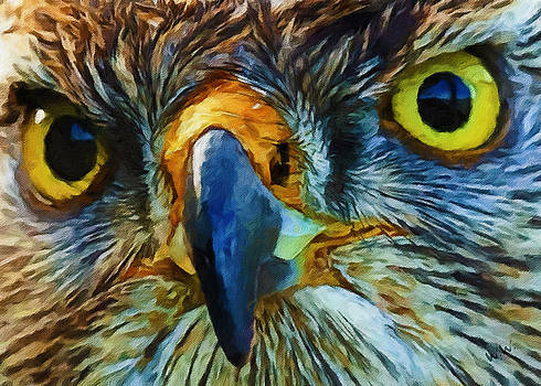 Bird Of Prey by William Wooding