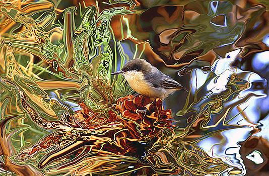 James Steele - Bird On A Pinecone