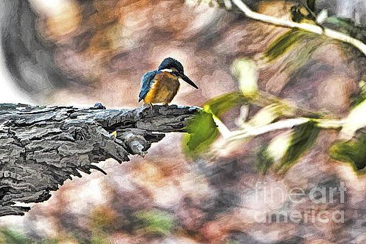 Bird on a tree by Pravine Chester