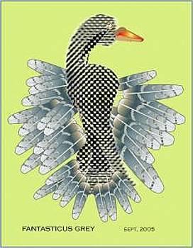 Bird by Shirley Sacks