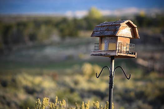 Birdhouse on stilts by Sharon Wunder Photography