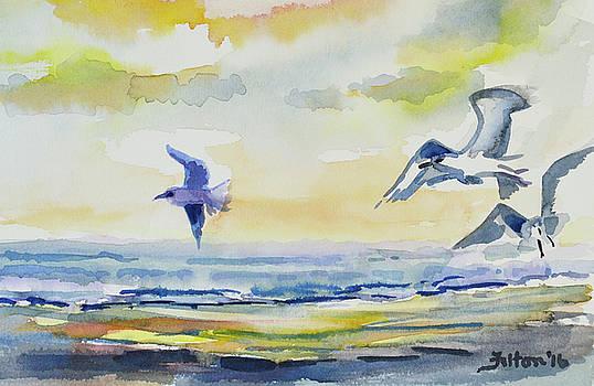 Birds at the shoreline by Julianne Felton