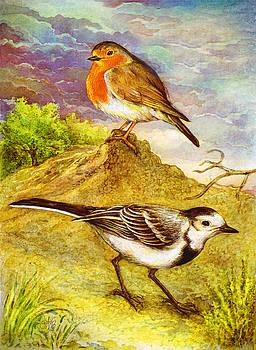 Natalie Berman - Birds