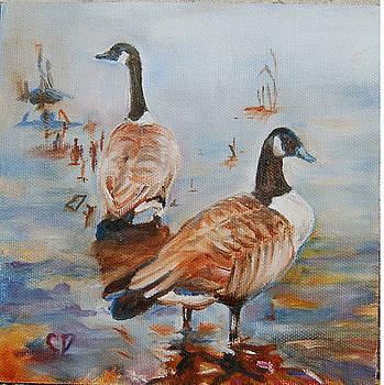 Birds of a Feather by Carol DeMumbrum