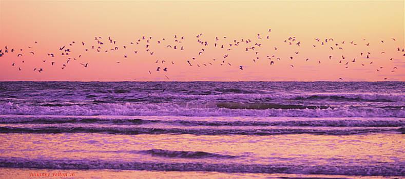Birds over the waves 10-23-16 by Julianne Felton