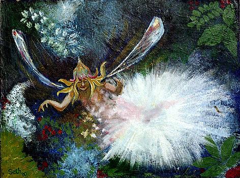 Birth of a Fairy by Seth Weaver
