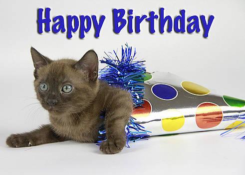 Birthday Greetings by Shoal Hollingsworth