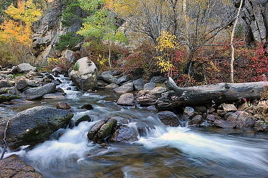 Bishop Creek by Dung Ma