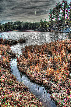 Bismark Lake in the Black Hills by Bill Gabbert