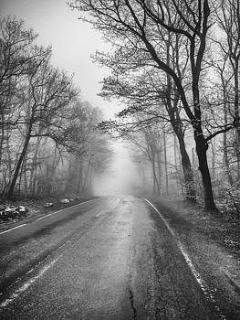 Black and white fog lifting by Luis Lugo