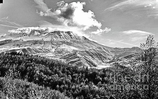 Black and White of Coldwater Lake and Mt. St. Helens by Ansel Price