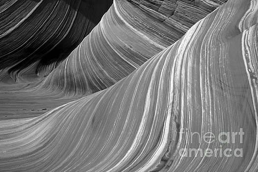 Adam Jewell - Black And White Sandstone Waves