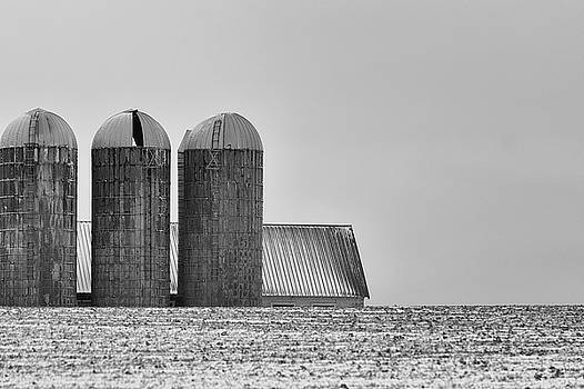 Black and White Silos by Dee Browning