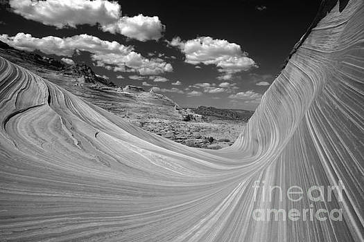 Adam Jewell - Black And White Swirling Landscape