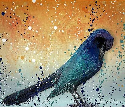 Black Bird Paint Splatter  by Barbara Chichester