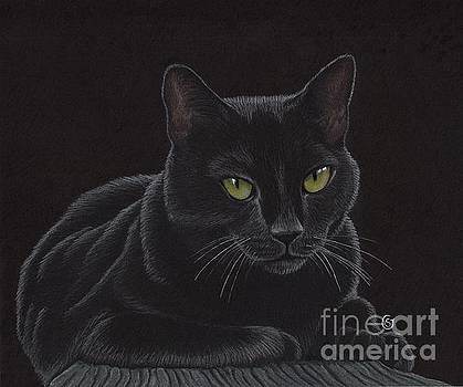 Black Cat - I'm Watching You by Sherry Goeben
