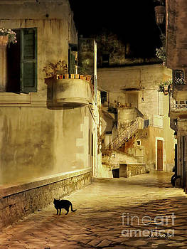 Silent Paws in Matera.Italy by Jennie Breeze