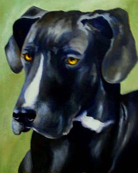 Black Dane by Donna Teleis