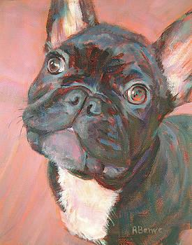 Black Dog, Looking Cute by Robie Benve