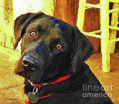 Black Lab Wants to Go For a Walk by Joseph J Stevens