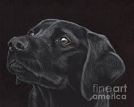 Black Labrador Retriever - Loyal Companion by Sherry Goeben