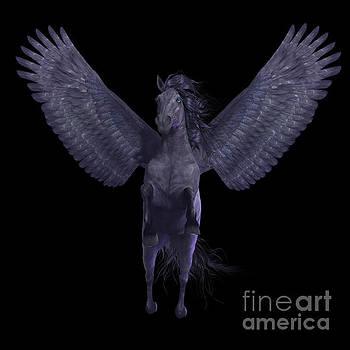 Corey Ford - Black Pegasus on Black