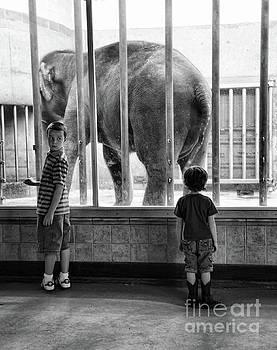 Chuck Kuhn - Black White Boys Elephant