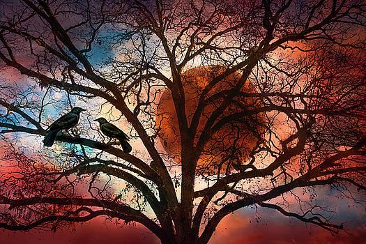 Blackbirds at Dusk by Debra and Dave Vanderlaan