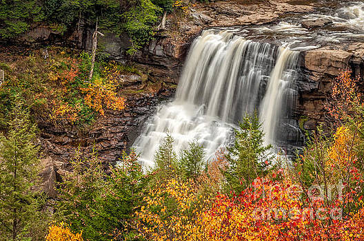 Kathleen K Parker - Blackwater Falls in Autumn WV