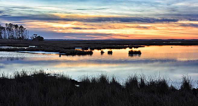 Blackwater National Wildlife Refuge - Sunsetting by Brendan Reals