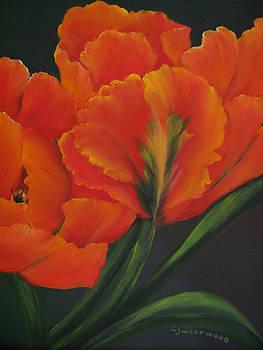 Blaze of Glory by Carol Sweetwood