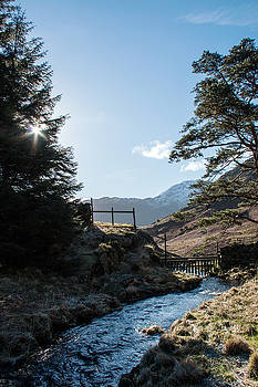 Blea Tarn stream  by Susan Tinsley