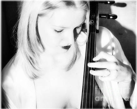 Blonde by Cello  by Steven Digman
