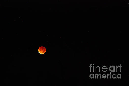 Blood Moon by Richard Gibb