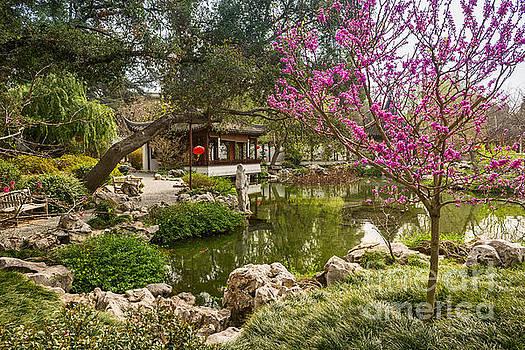 Jamie Pham - Blooming Garden View